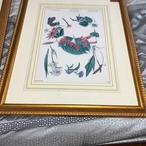 Set of 3 Bombay prints